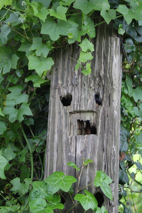 Un fencepost fotografia stock