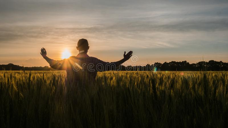 Un fermier mâle lève les mains au soleil levant sur un champ de blé image stock
