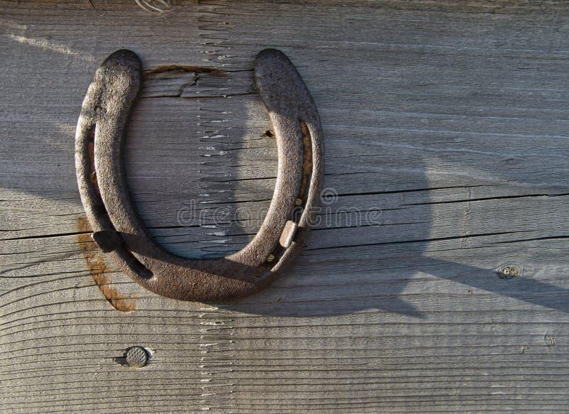 Un ferro di cavallo su un bordo di legno come incanto fortunato fotografia stock libera da diritti
