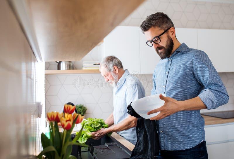 Un figlio adulto dei pantaloni a vita bassa e un padre senior all'interno a casa, lavando le verdure immagine stock