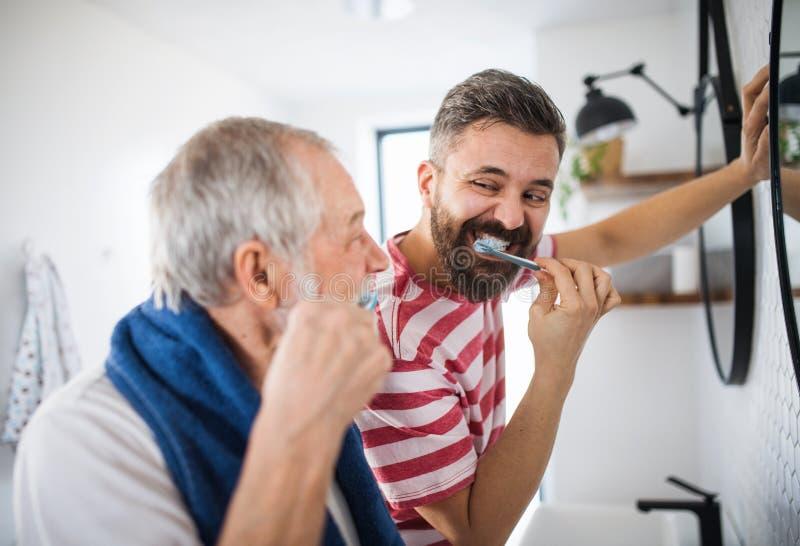 Un figlio adulto dei pantaloni a vita bassa ed i denti di spazzolatura del padre senior all'interno a casa fotografie stock libere da diritti