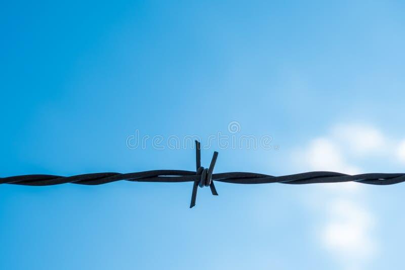 Un filamento de alambre de púas con el cielo azul y las nubes en el backgr imágenes de archivo libres de regalías