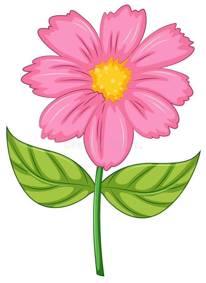 Un fiore rosa illustrazione vettoriale
