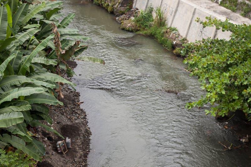 Un fiume con la foglia del banano sulla foto laterale in jogja Indonesia immagine stock