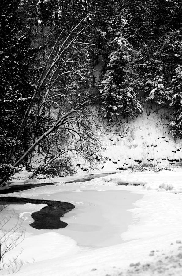 Un fiume di bobina di inverno immagine stock