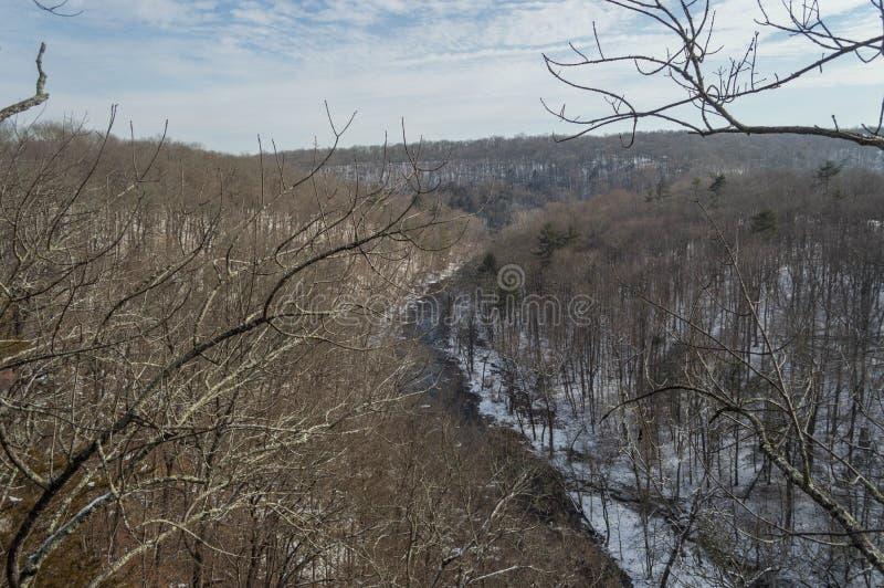 Un fiume nevoso passa la foresta immagine stock
