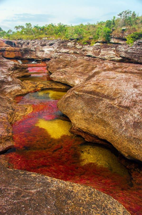 Un fleuve multicolore en Colombie image libre de droits