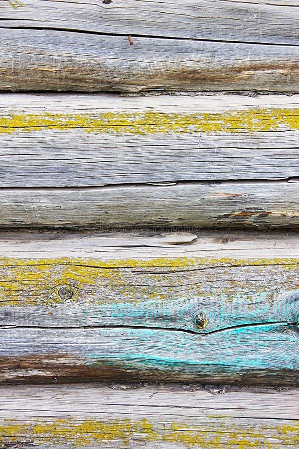 Un fond élégant de vintage : un mur en bois de maison fait d'un faisceau de mousse jaune couvert de peinture bleue photographie stock