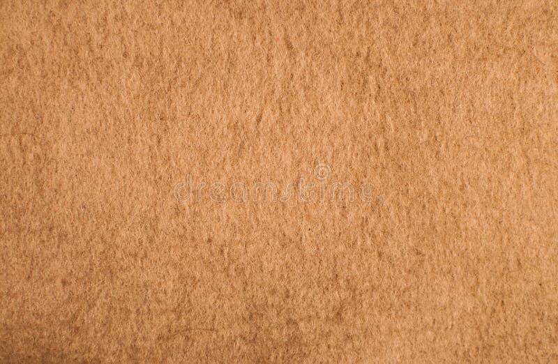 Un fond clair de texture de chameau-cheveu photo libre de droits