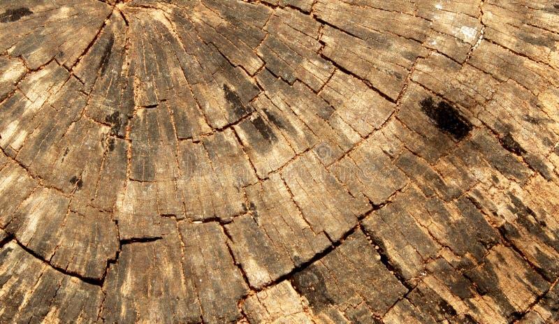 Un fond en bois de texture de coupe de croix photographie stock libre de droits