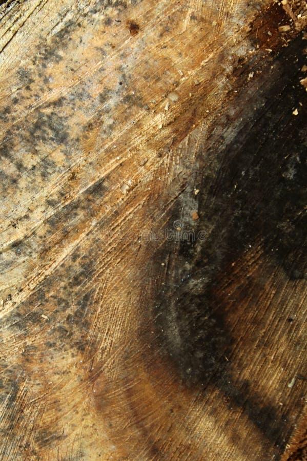Un fond en bois de verticale de texture de coupe de croix photographie stock libre de droits