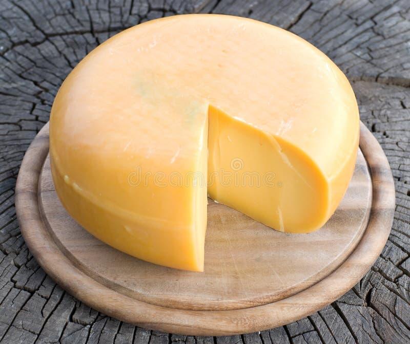 Un formaggio immagini stock libere da diritti