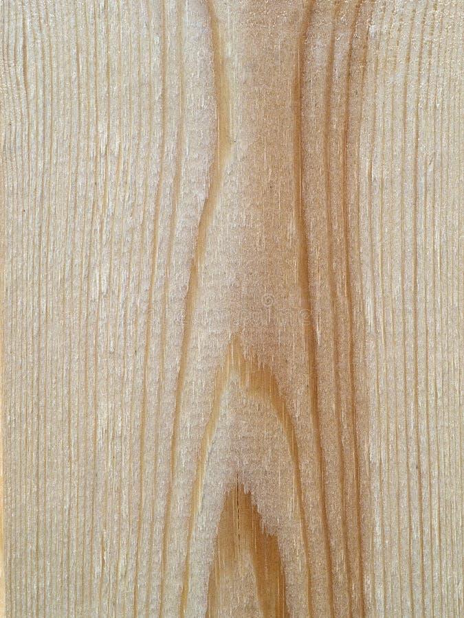 Un fragment d'un conseil en bois fraîchement scié avec un modèle vertical dans des tons bruns photo libre de droits