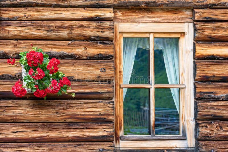 Un fragment d'une maison alpine en bois Le mur a fait des rondins, de la fenêtre et des fleurs rouges accrochant sur le mur photo stock