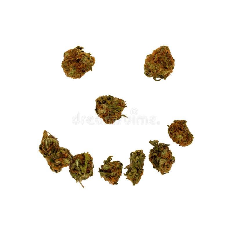 Un fronte sorridente o felice fatto dai grandi germogli della marijuana su un bianco fotografie stock
