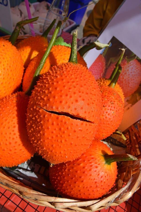 Un fruit au sud-est de l'Asiatique, généralement connu sous le nom de Gac, bébé Jackruit, courge amère épineuse ou courge de Coch photographie stock