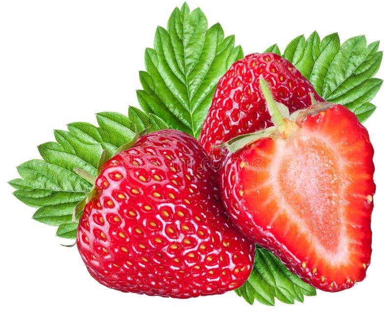 Un fruit riche de fraise photo libre de droits