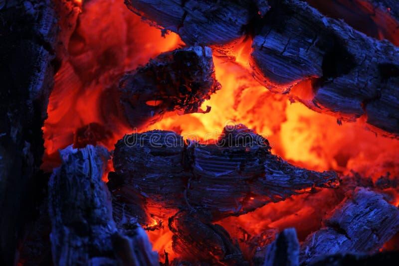 Un fuego hermoso de la tarde que derrite lejos con los carbones rojos imagen de archivo