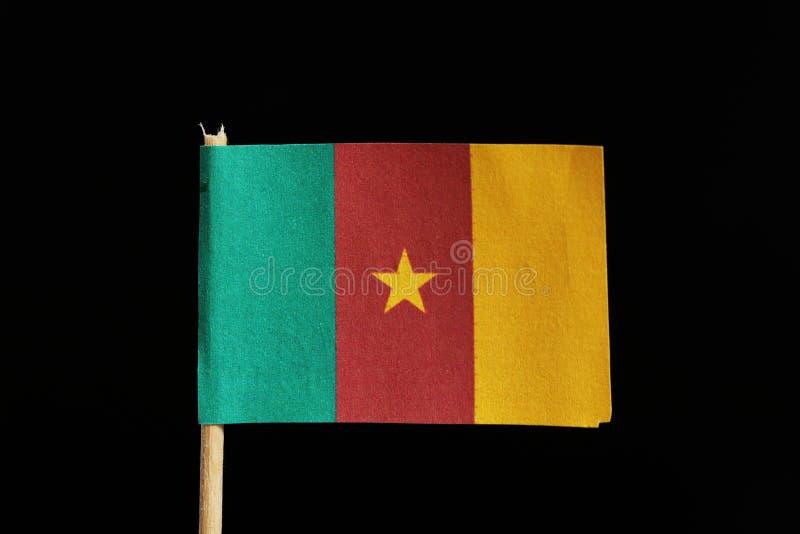 Un funcionario y una bandera original del Camerún en palillo en fondo negro Es una vertical tricolora de verde, de rojo y de amar foto de archivo libre de regalías
