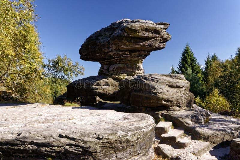 Un fungo ha modellato le formazioni rocciose circondato da pianta immagine stock libera da diritti