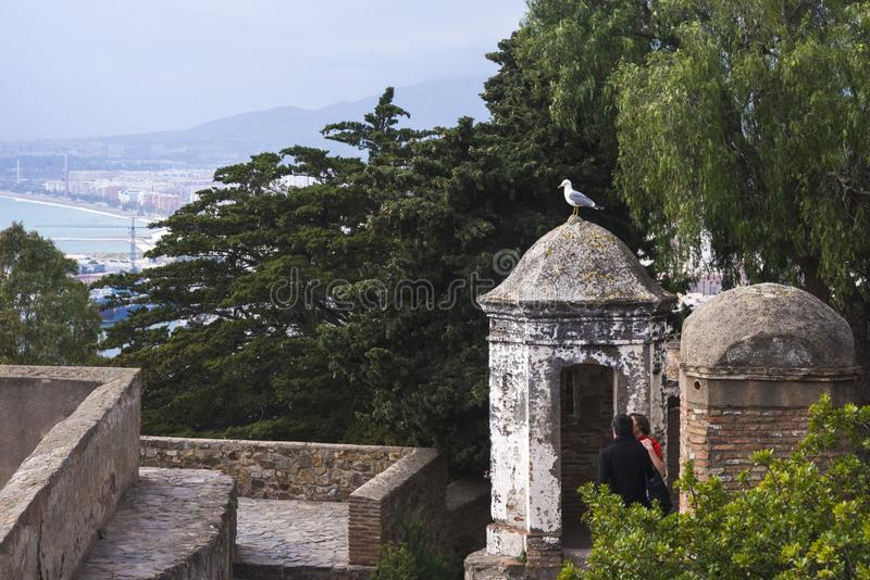 Un gabbiano si siede sulla cupola di vecchia costruzione nella fortezza Gibralfaro, Malaga, Spagna Una coppia amorosa esamina un  immagini stock