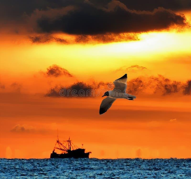 Un gamberetto che la barca pesca per la sua bontà come il sole aumenta sopra l'orizzonte fotografie stock libere da diritti
