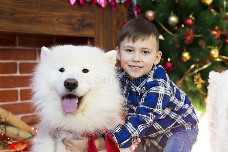 Un garçon avec un grand chien à Noël photo libre de droits