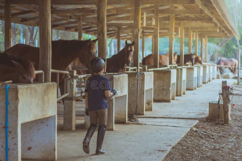Un garçon de liitle prennent soin de son cheval après avoir été formé dans débarrassé photo libre de droits