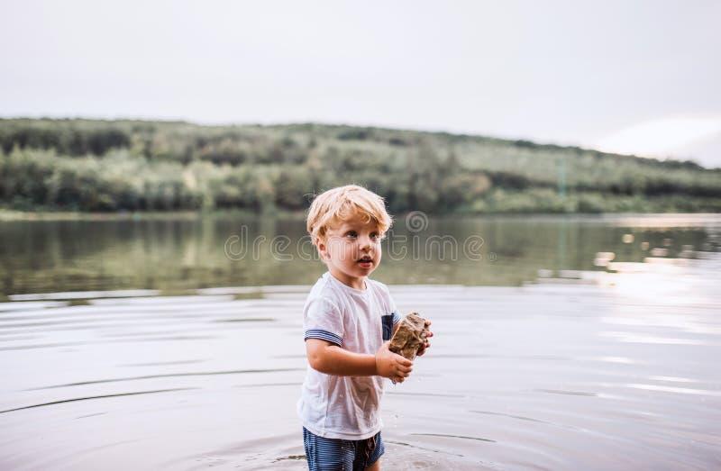 Un garçon humide et petit d'enfant en bas âge se tenant dehors en rivière en été, jouant photographie stock