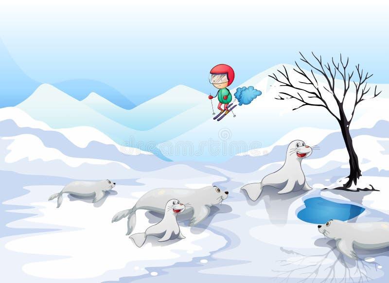 Un garçon patinant avec des otaries illustration de vecteur