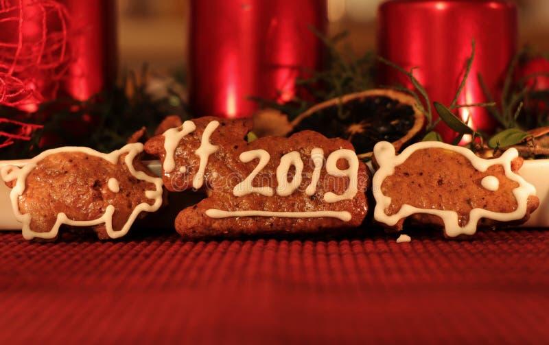 Un gato hecho en casa del pan de jengibre cubrió con la formación de hielo blanca y letra PF 2019 Cerdos de los dos panes de jeng fotografía de archivo