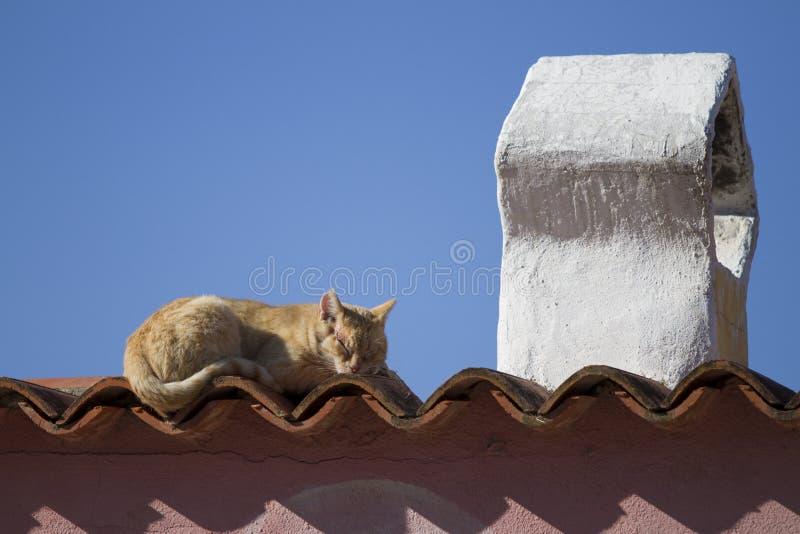 Un gato pelirrojo duerme en el sol en las tejas de un tejado de una casa mediterránea típica con una chimenea formada tradicional foto de archivo