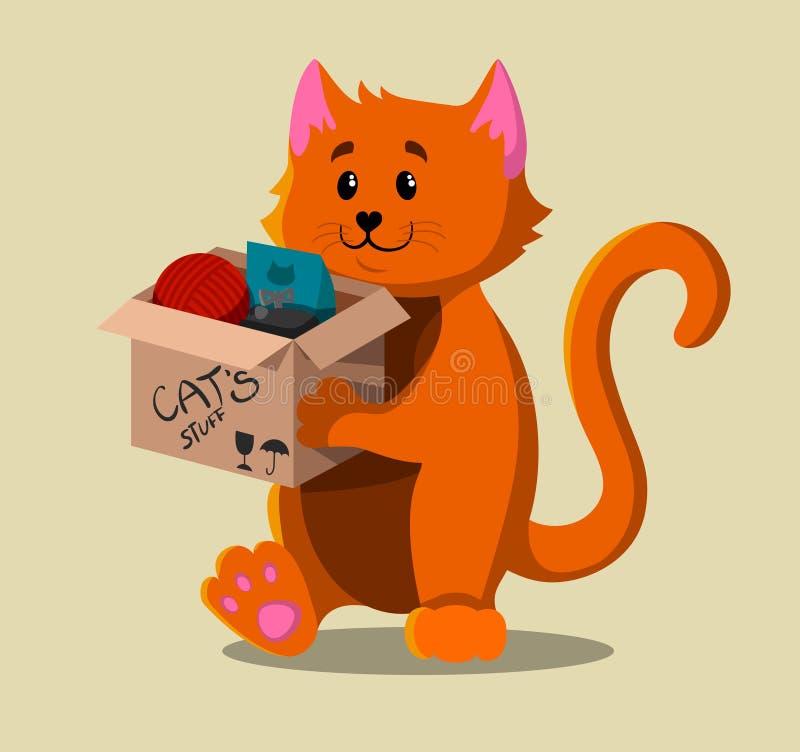 Un gato rojo que se mueve a una nueva casa fotos de archivo libres de regalías