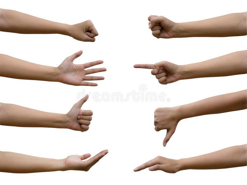Un gesto di mano femminile asiatico multiplo isolato su fondo bianco Percorso di residuo della potatura meccanica incluso Vista l fotografia stock libera da diritti
