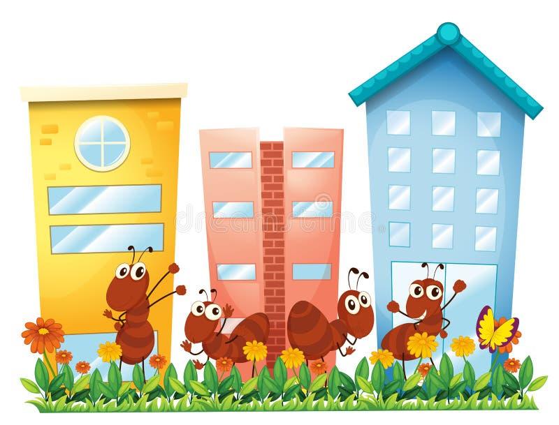 Un giardino con le formiche e una farfalla illustrazione di stock
