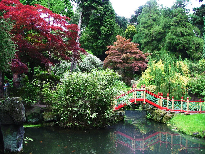 Un giardino giapponese fotografia stock