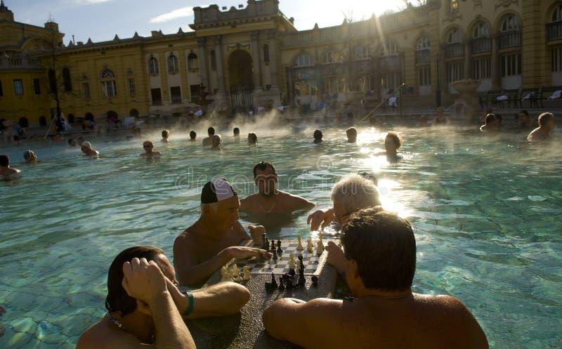 Un gioco di scacchi nel bagno del termale di Szechenyi immagini stock libere da diritti
