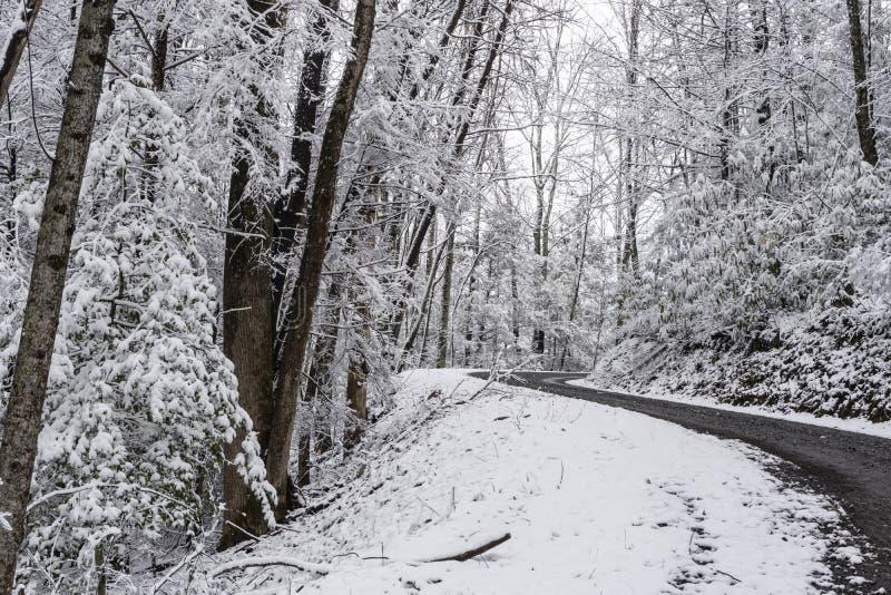 Un giorno di inverno nevoso lungo una strada della montagna nel Tennessee immagine stock