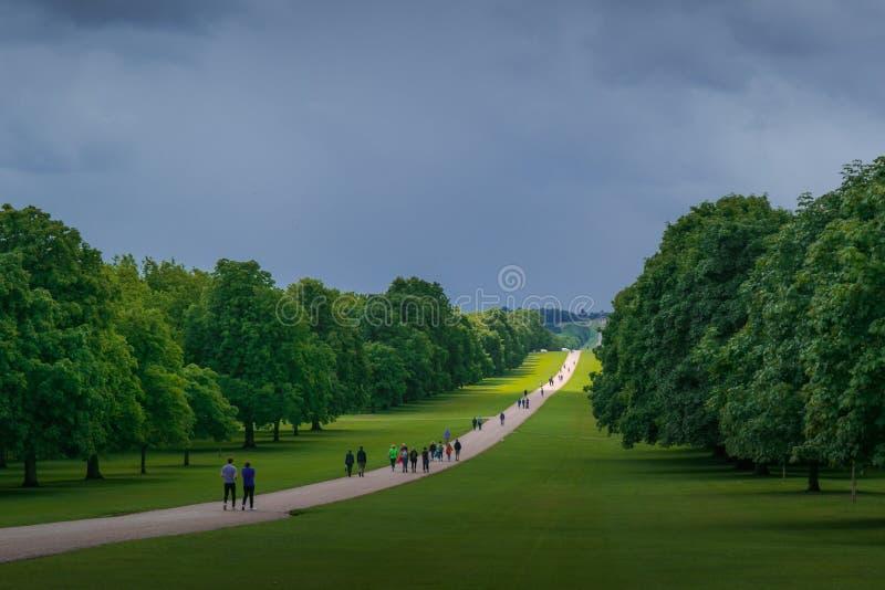 Un giorno lunatico alla passeggiata lunga in Windsor Great Park fotografia stock