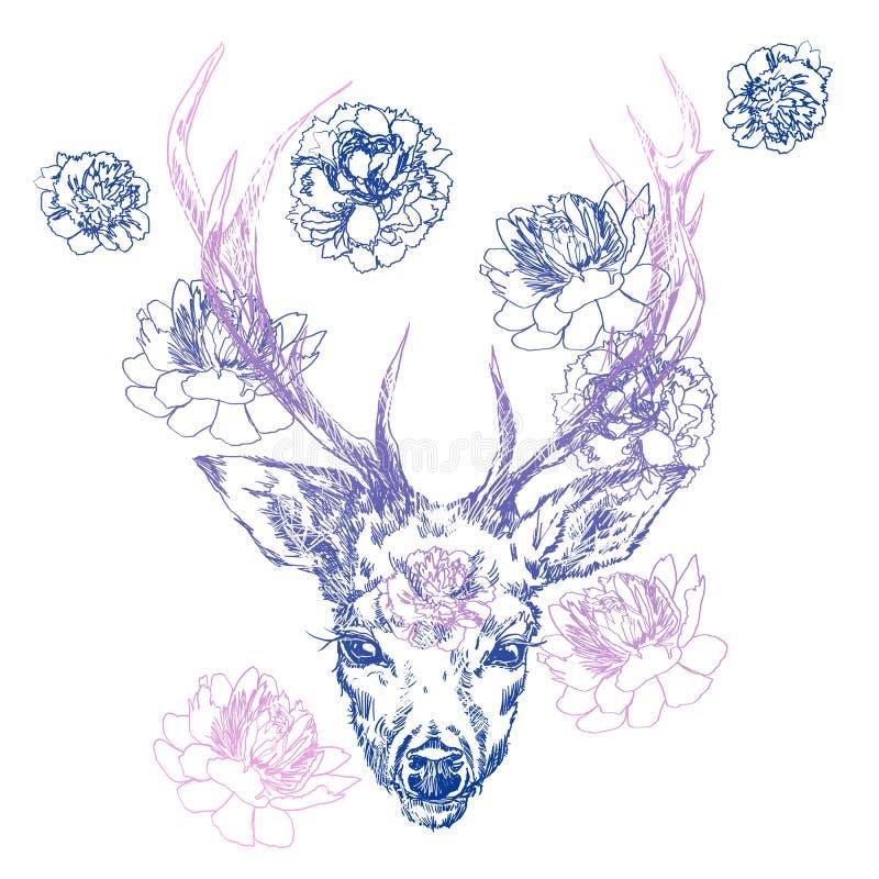 Un giovane cervo con i corni cornei su cui le peonie sono piantate Illustrazione Progetti un tatuaggio, un simbolo di magia misti illustrazione vettoriale
