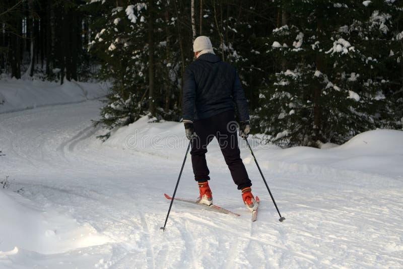 Un giovane guida lo sci di fondo Inverno attivo Ospiti attivi Sport dilettanti immagini stock