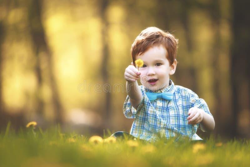 Un giovane ragazzo sveglio in un campo dei fiori fotografia stock libera da diritti