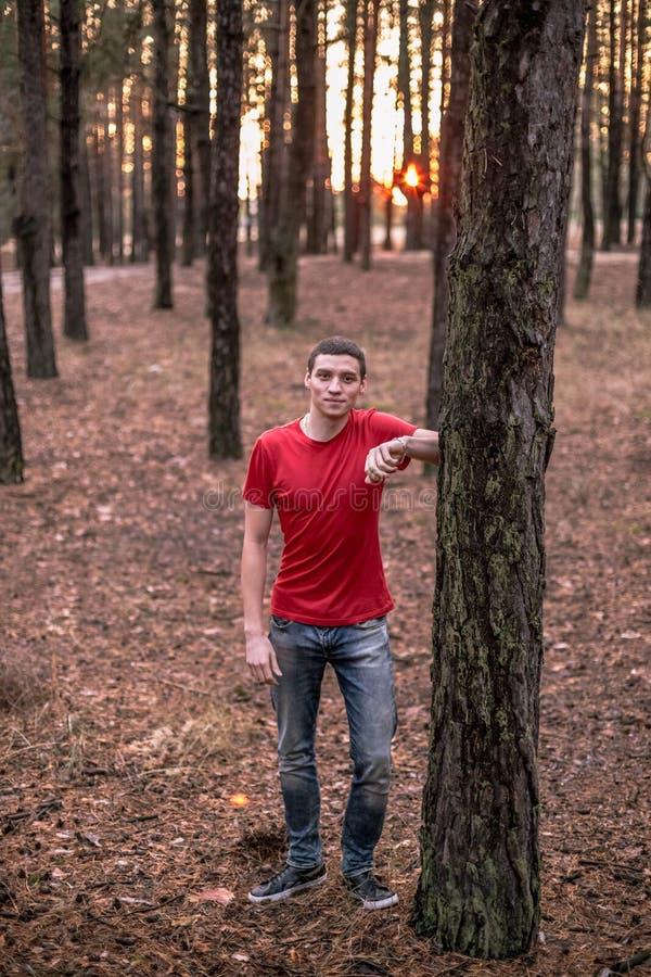 Un giovane tipo in una maglietta rossa in un'abetaia fotografie stock libere da diritti