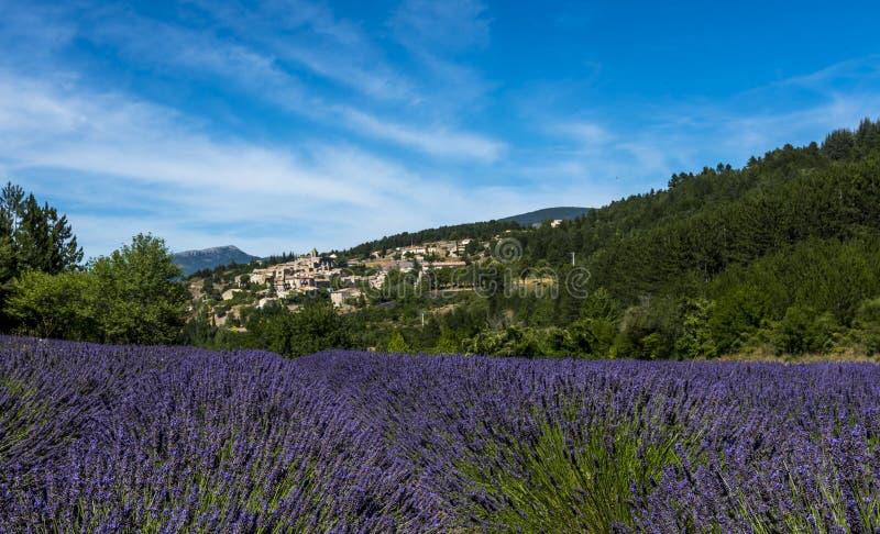 Un gisement de lavande avec le village provencal d'Aurel à l'arrière-plan photo stock