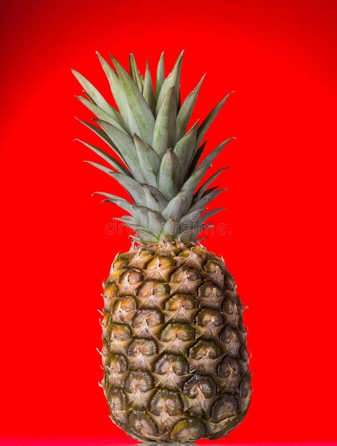 Un grand ananas mûr sur le fond rouge photo libre de droits
