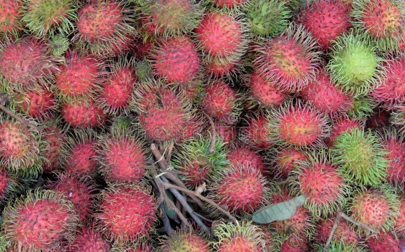 Un grand nombre de ramboutans comme fond Fruits tropicaux peu communs photographie stock libre de droits
