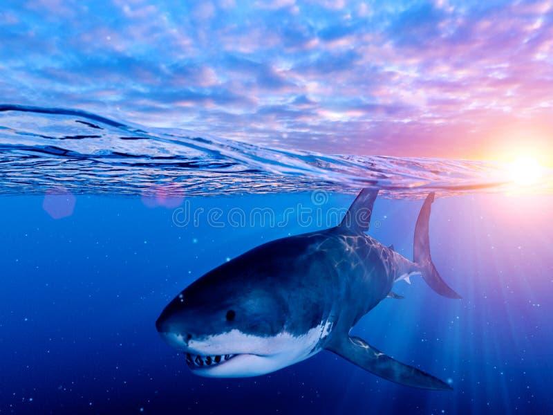 Un grande squalo bianco royalty illustrazione gratis