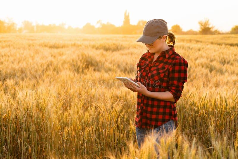Un granjero de la mujer con la tableta imágenes de archivo libres de regalías