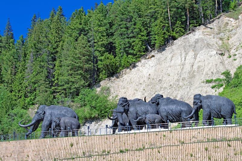 Un gregge dei mammut lanosi, una composizione scultorea all'aperto in Chanty-Mansijsk, Russia immagini stock libere da diritti