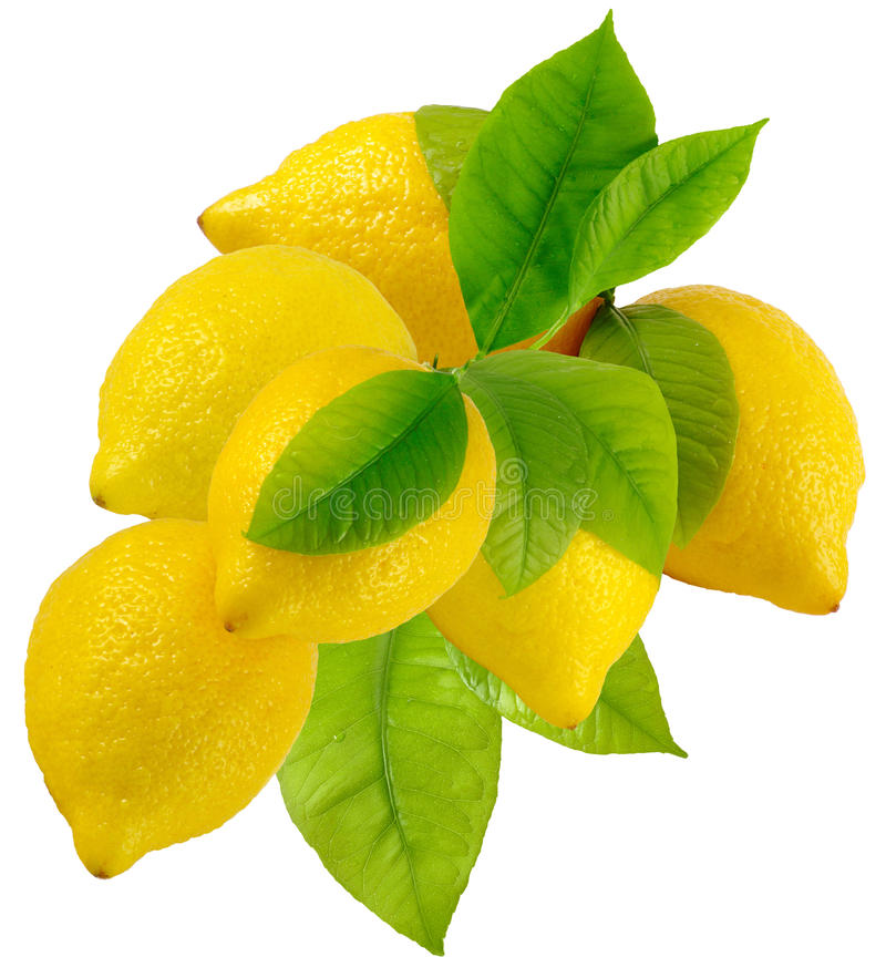 Un groupe de citrons photographie stock